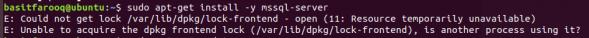 sql2k17_install_error_unbuntu_18.04